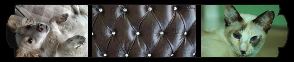 upholstery johannesburg
