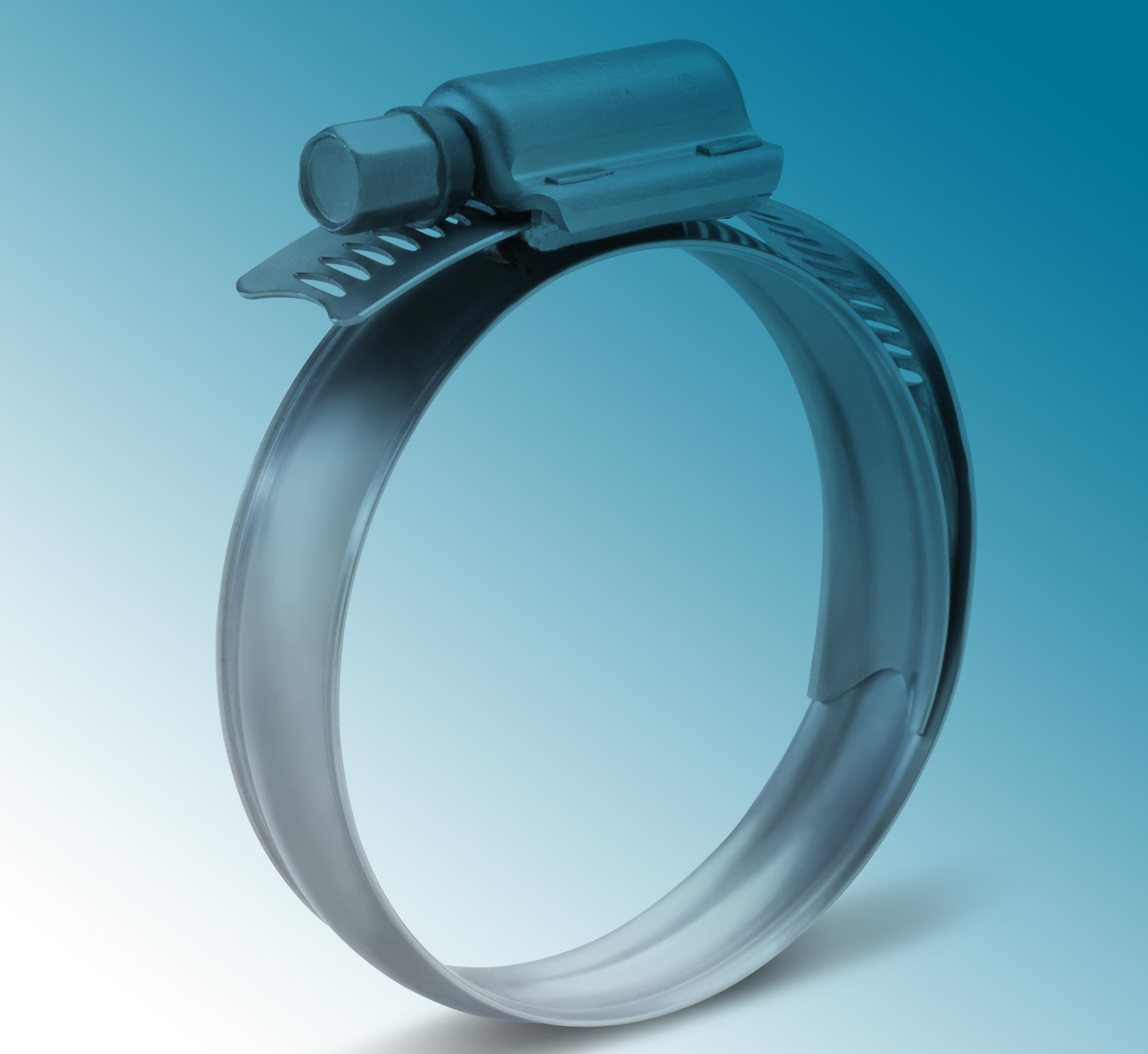 Stainless Steel Band and Ring